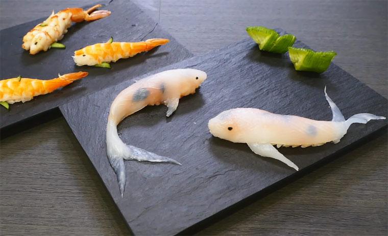 Schöner Sushi Koi-Fisch-Sushi_01