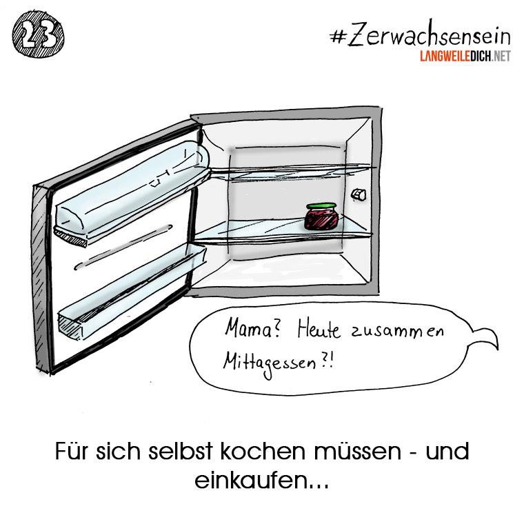 #Zerwachsensein 23: Kühlschrank Zerwachsensein_23