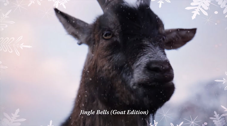 Von Ziegen gesungene Weihnachts-CD all-i-want-for-christmas-is-a-goat