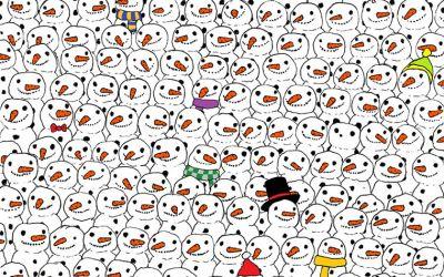 finding-the-panda_01
