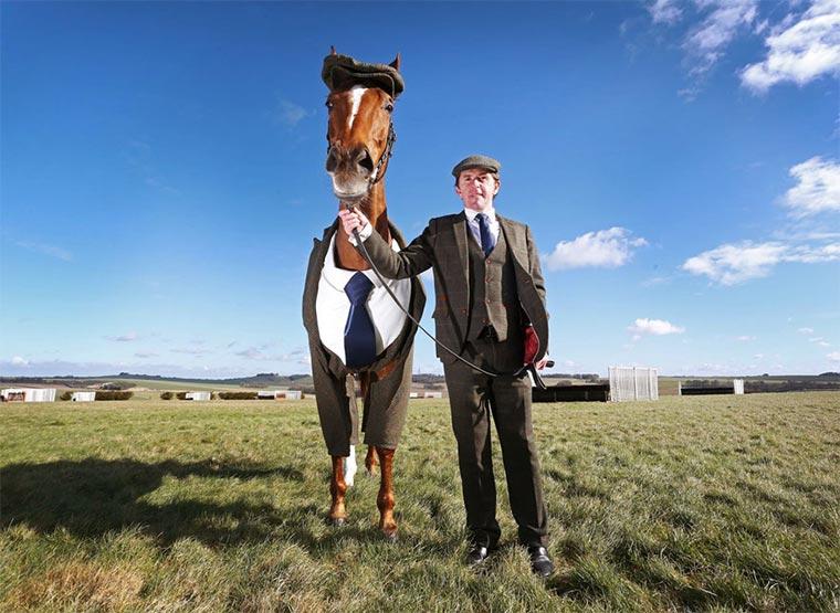 Dieses Pferd hat mehr Style als Du horse-suit2