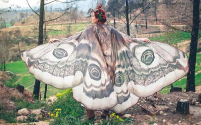 butterfly-capes_01