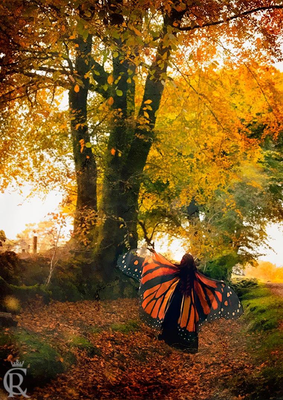 Mit diesen Capes wirst du zum Schmetterling butterfly-capes_07