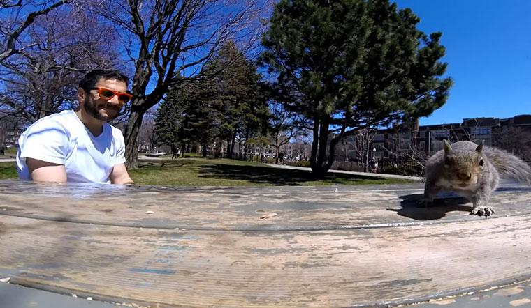 Eichhörnchen klaut GoPro und wird Naturdokufilmer
