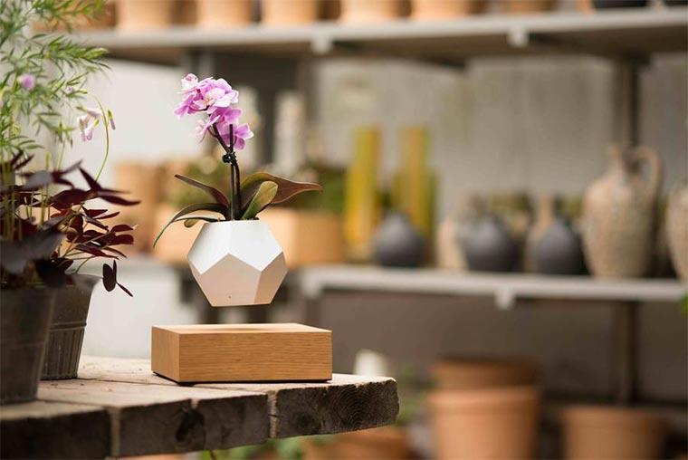 Schwebende Blumenkübel LYFE_06