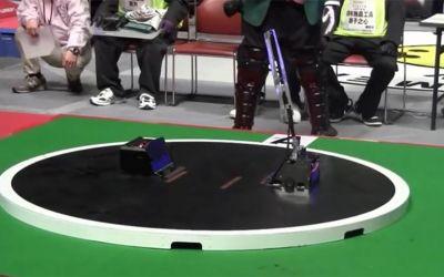 robots-sumo-wrestling
