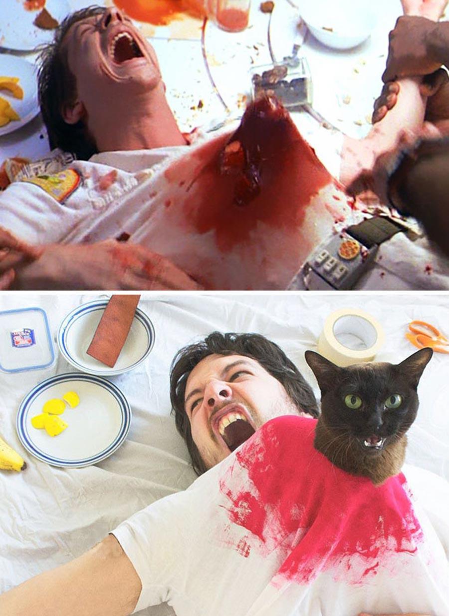 Mann stellt Filmszenen mit Katzen nach movie-cats_02