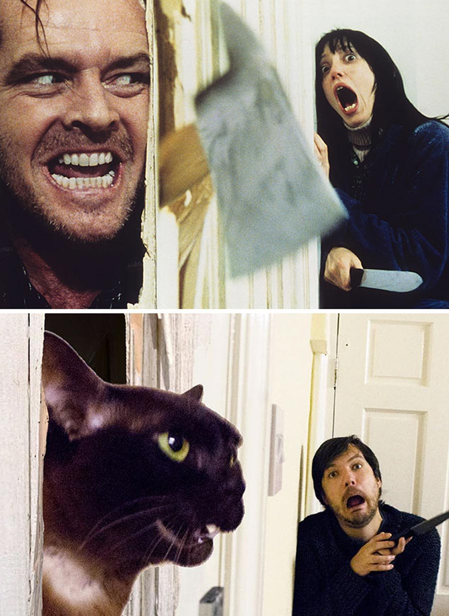 Mann stellt Filmszenen mit Katzen nach movie-cats_04