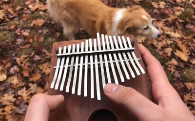 'All The Small Things' auf einer Kalimba