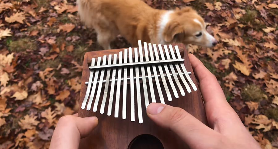 'All The Small Things' auf einer Kalimba all-the-small-kalimbas
