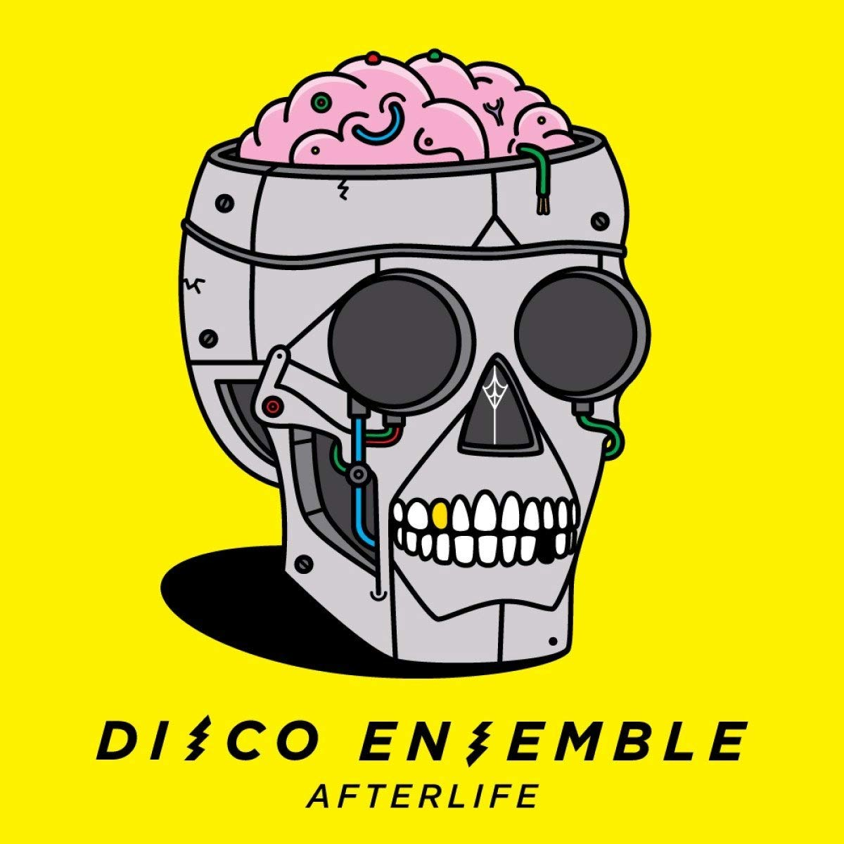 Review: Disco Ensemble - Afterlife Disco-Ensemble-afterlife-album-cover