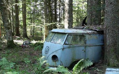 Die Rettung eines 1955er VW Bullies