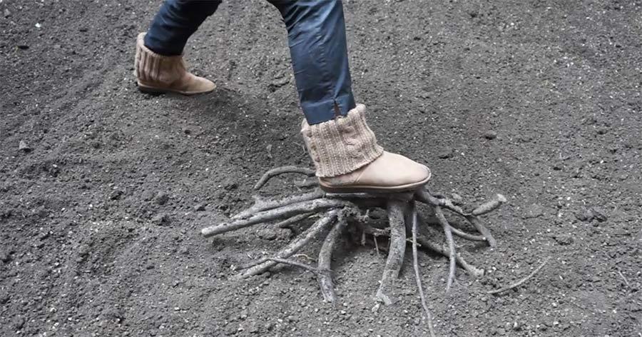 28 verrückte Paar Schuhe down-to-earth