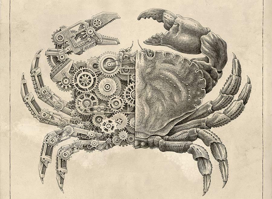 Timelapse-Zeichnung einer mechanischen Krabbe