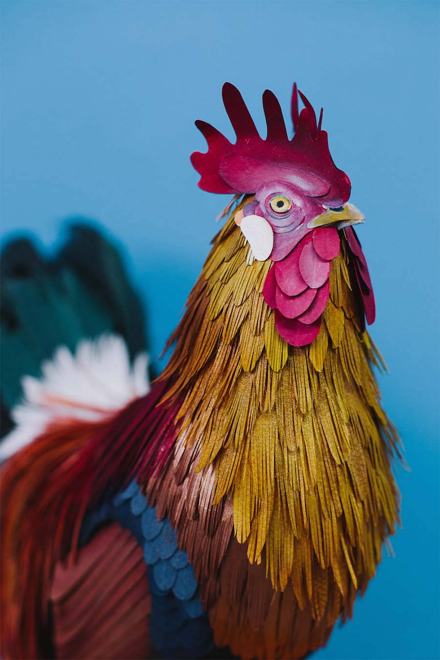 Neue Papiervögel von Diana Beltran Herrera diana-beltran-herrera-2_02