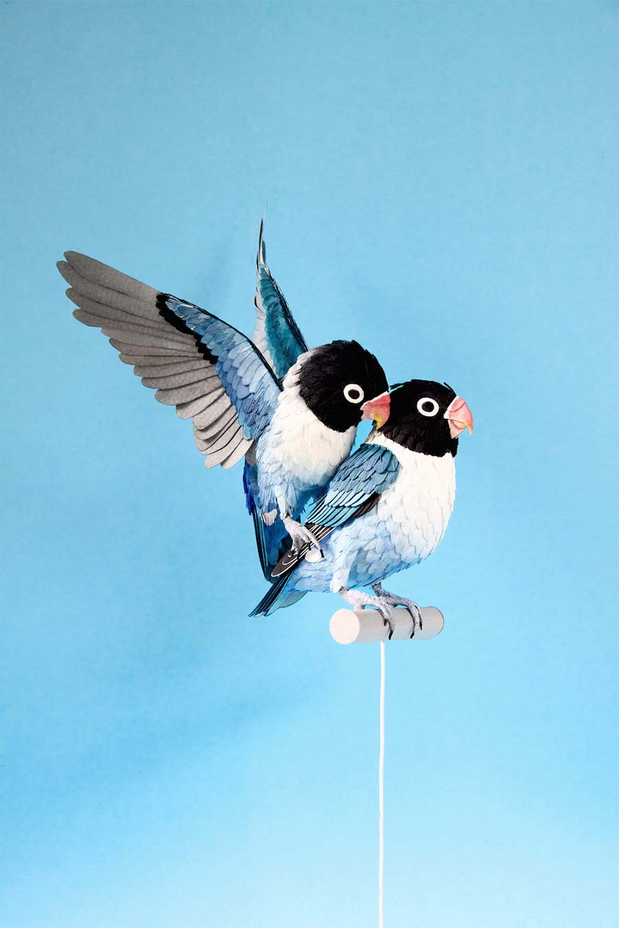 Neue Papiervögel von Diana Beltran Herrera diana-beltran-herrera-2_05