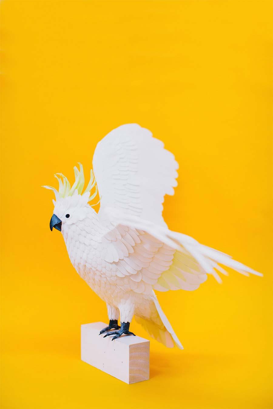 Neue Papiervögel von Diana Beltran Herrera diana-beltran-herrera-2_06