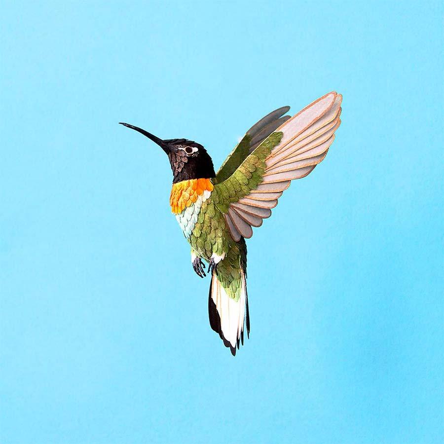 Neue Papiervögel von Diana Beltran Herrera diana-beltran-herrera-2_07