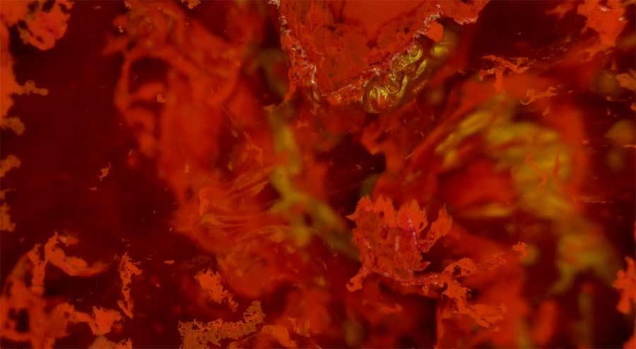 Wunderschöne Makro-Aufnahmen chemischer Reaktionen