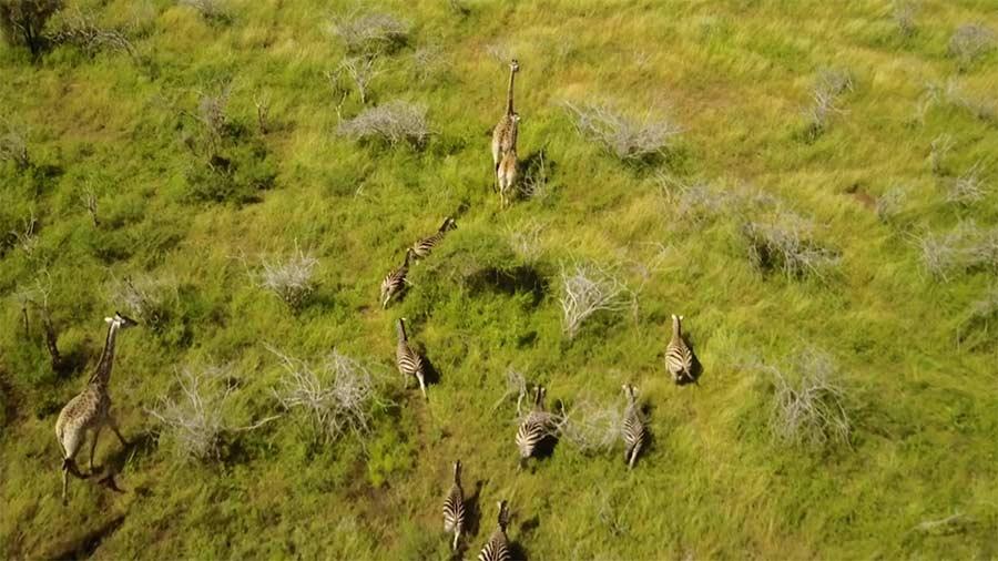 Südafrika aus der Vogelperspektive