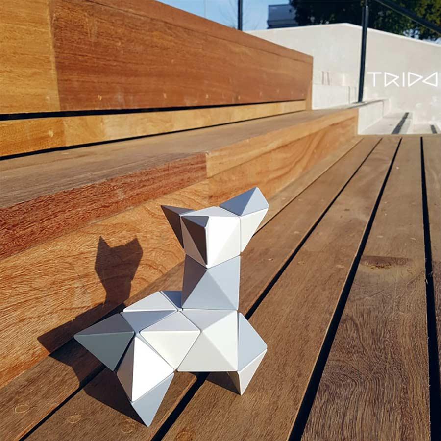 Magnetische Polygon-Bausteine trido-magnetic-building-stones_03