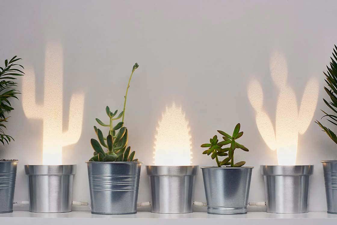 Cactus Lamps