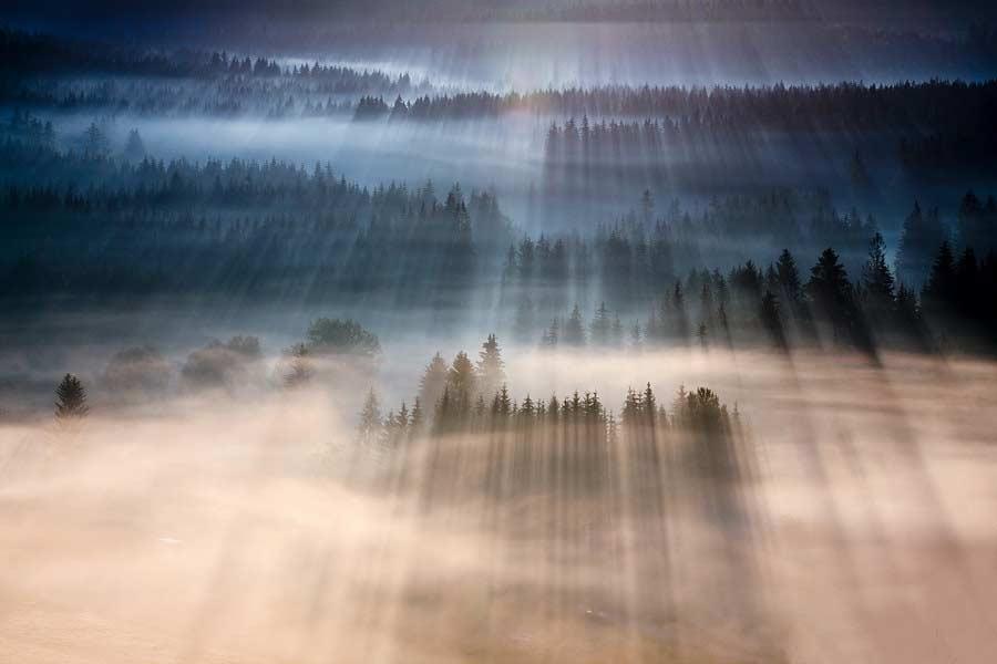 Fotografie: Marcin Sobas