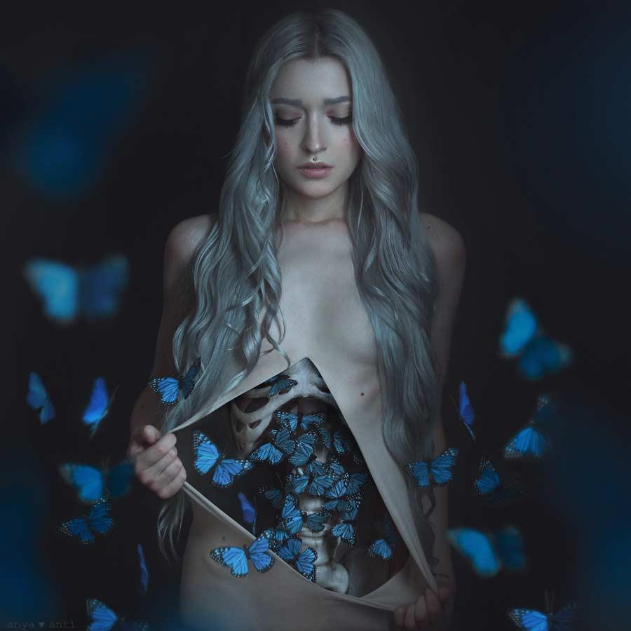 So entstehen Schmetterlinge im Bauch