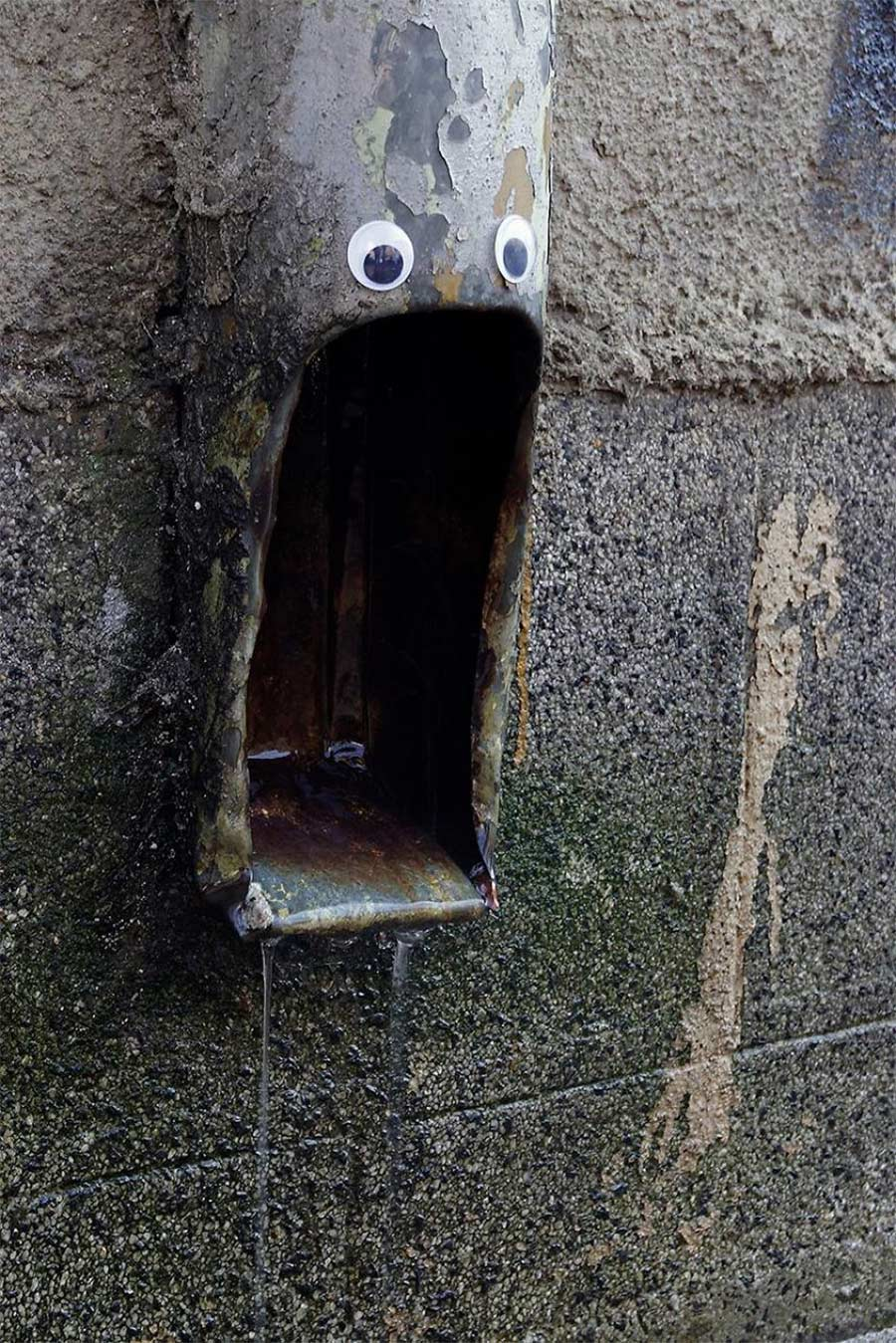 In Bulgarien trägt die Stadt Googly Eyes eyebombing_04
