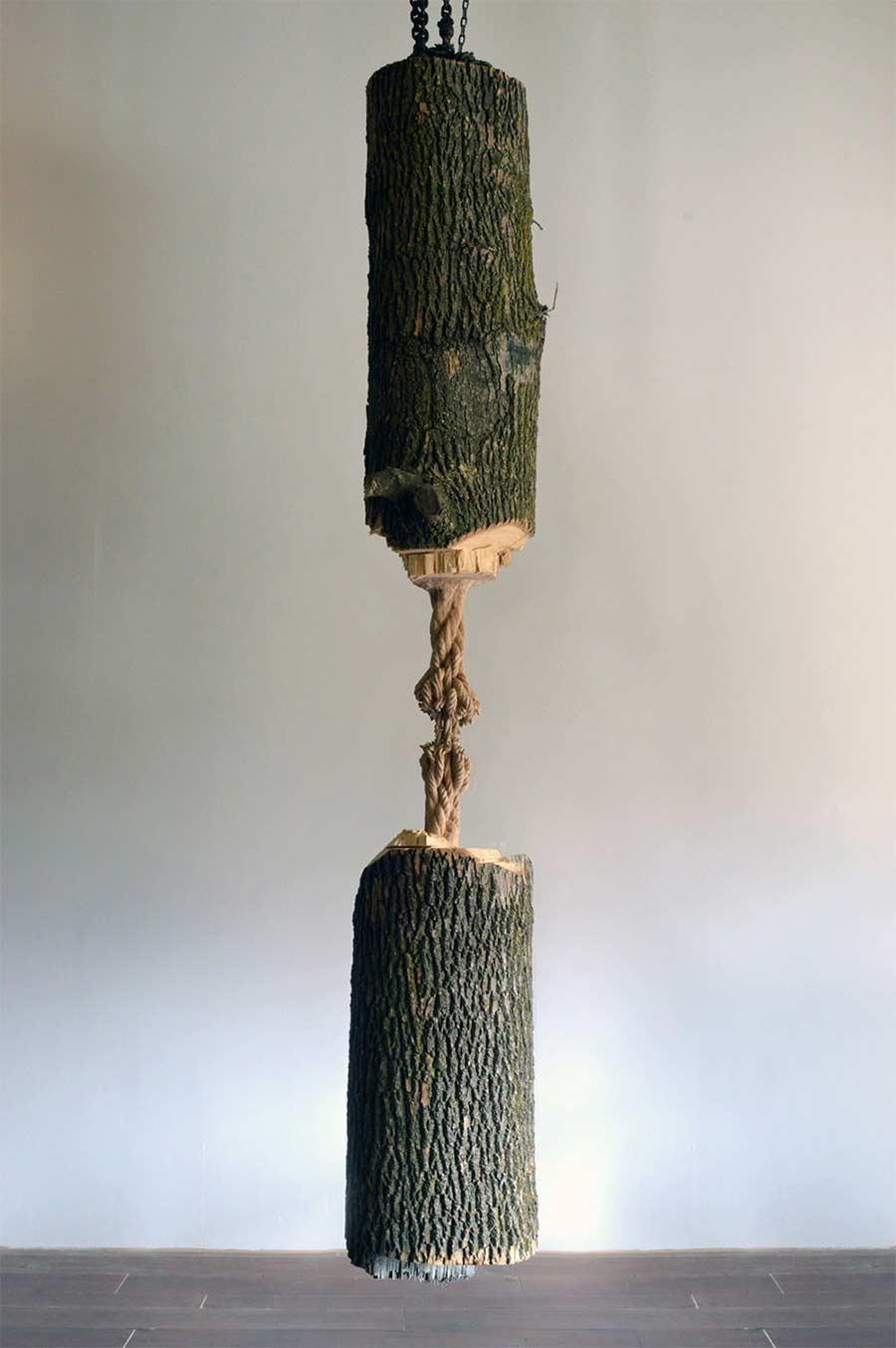 Dieser Baumstamm hängt am hölzernen Faden schrodingers-wood_02