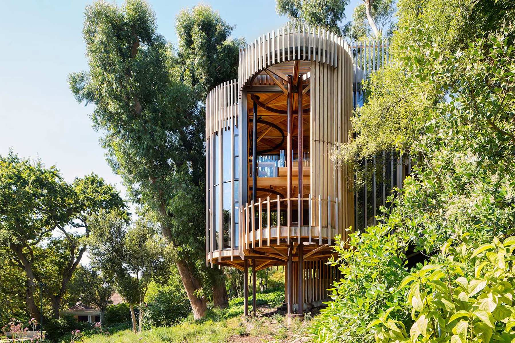 Das etwas andere Baumhaus tree-house-Malan-Vorster_08