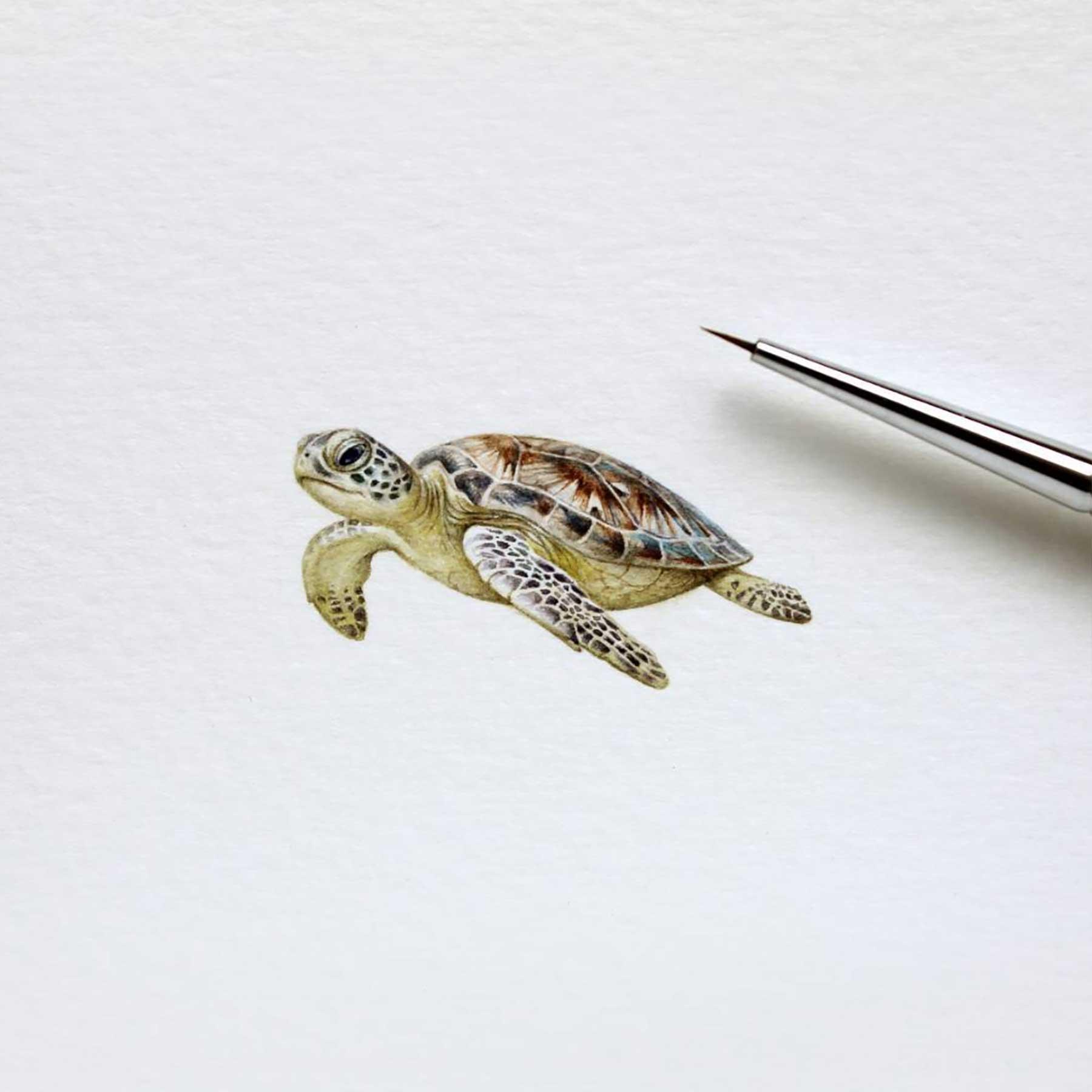 Miniatur-Wasserfarb-Tiere julia-las-wasserfarbe-tierportraits_07