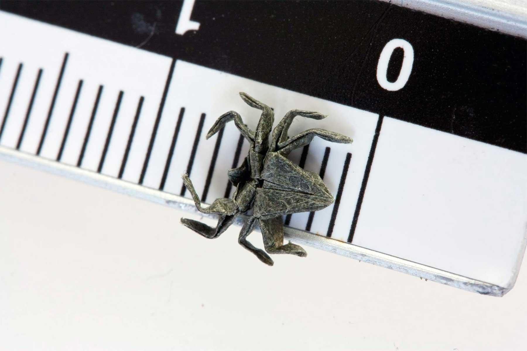 Nano Origami Anja-Markiewicz_nano-origami_10