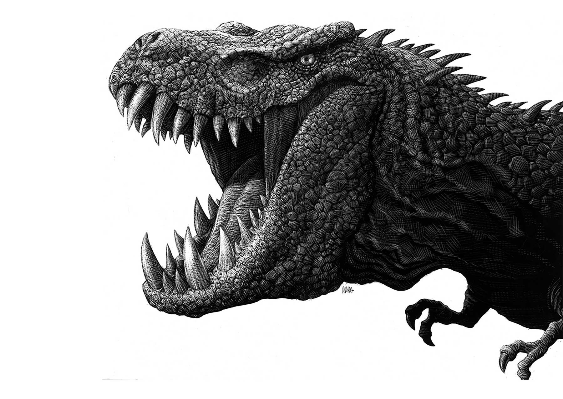 Detaillierte Tierportraits von Ricardo Martinez Ricardo-Martinez_01