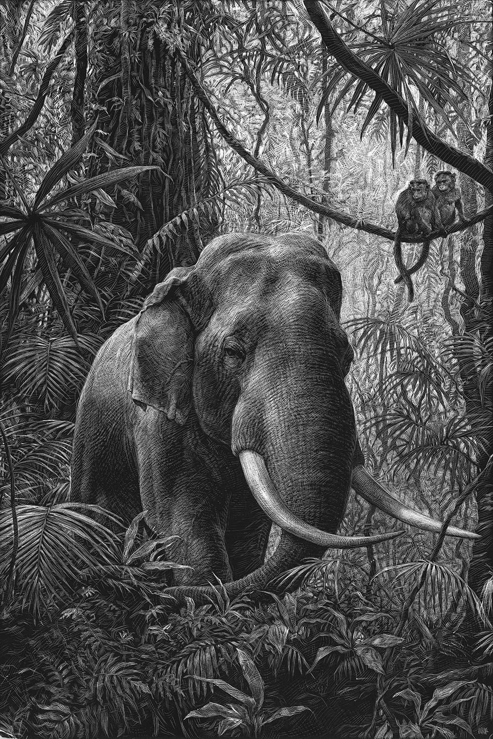 Detaillierte Tierportraits von Ricardo Martinez Ricardo-Martinez_02