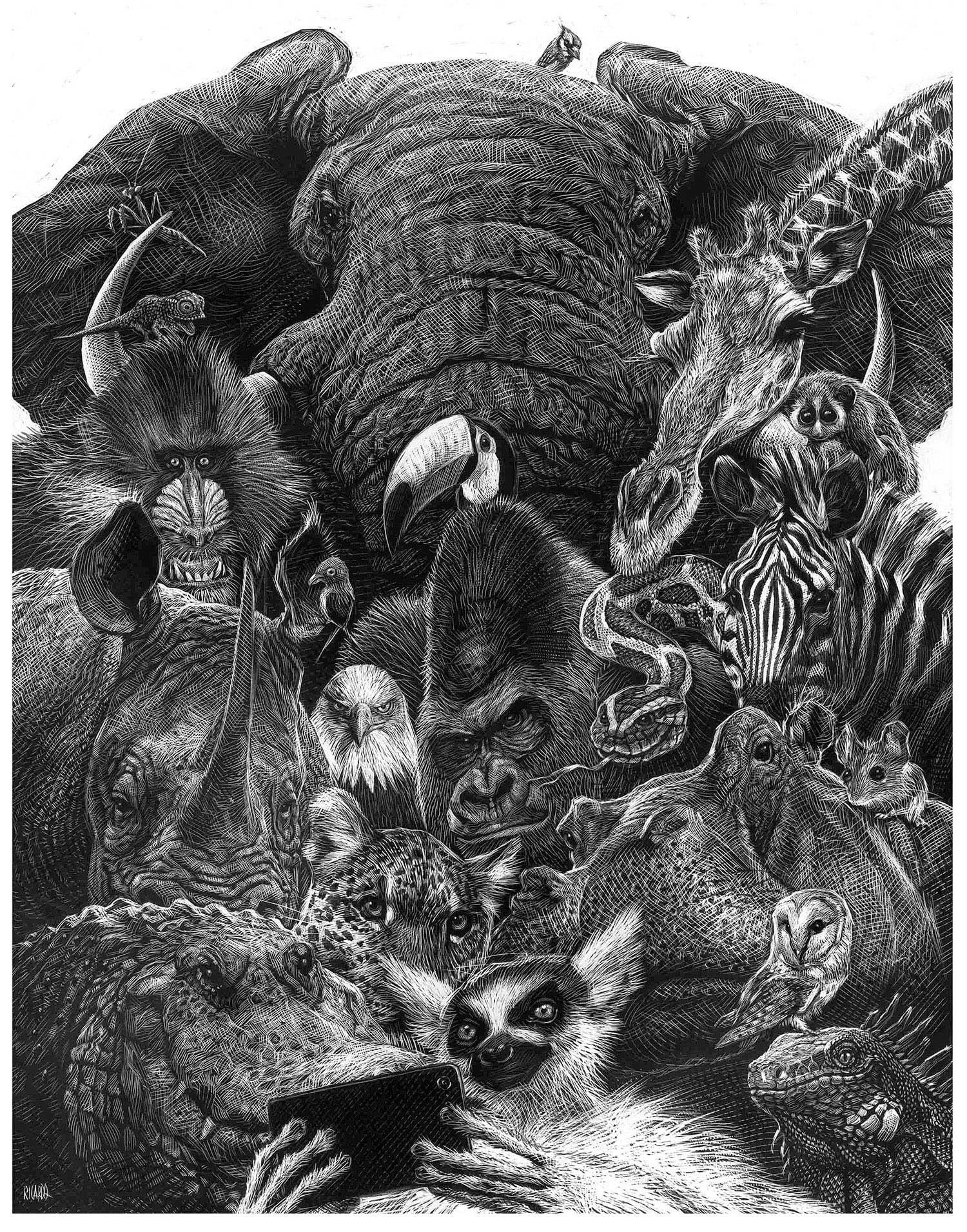 Detaillierte Tierportraits von Ricardo Martinez Ricardo-Martinez_03