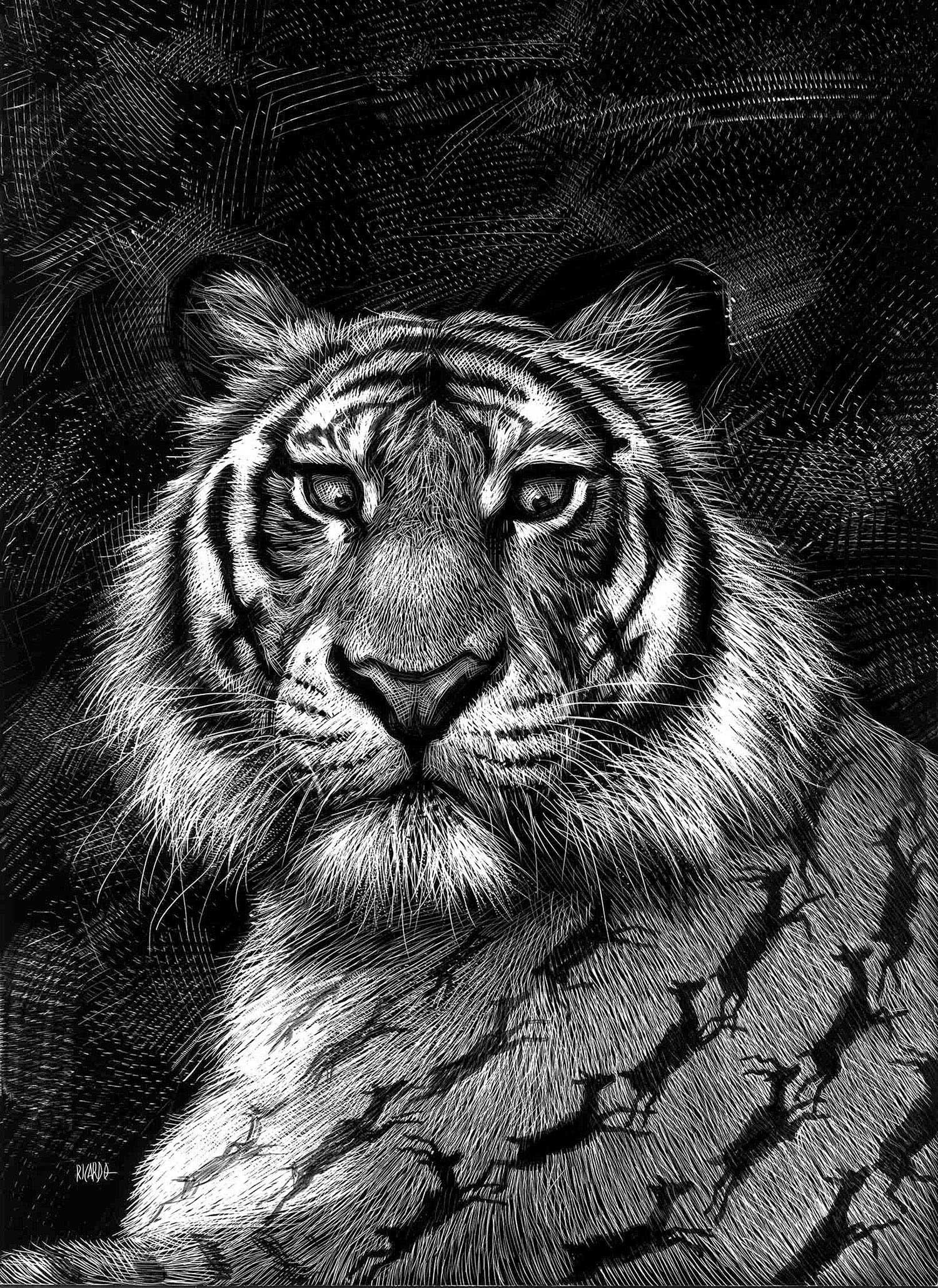 Detaillierte Tierportraits von Ricardo Martinez Ricardo-Martinez_04