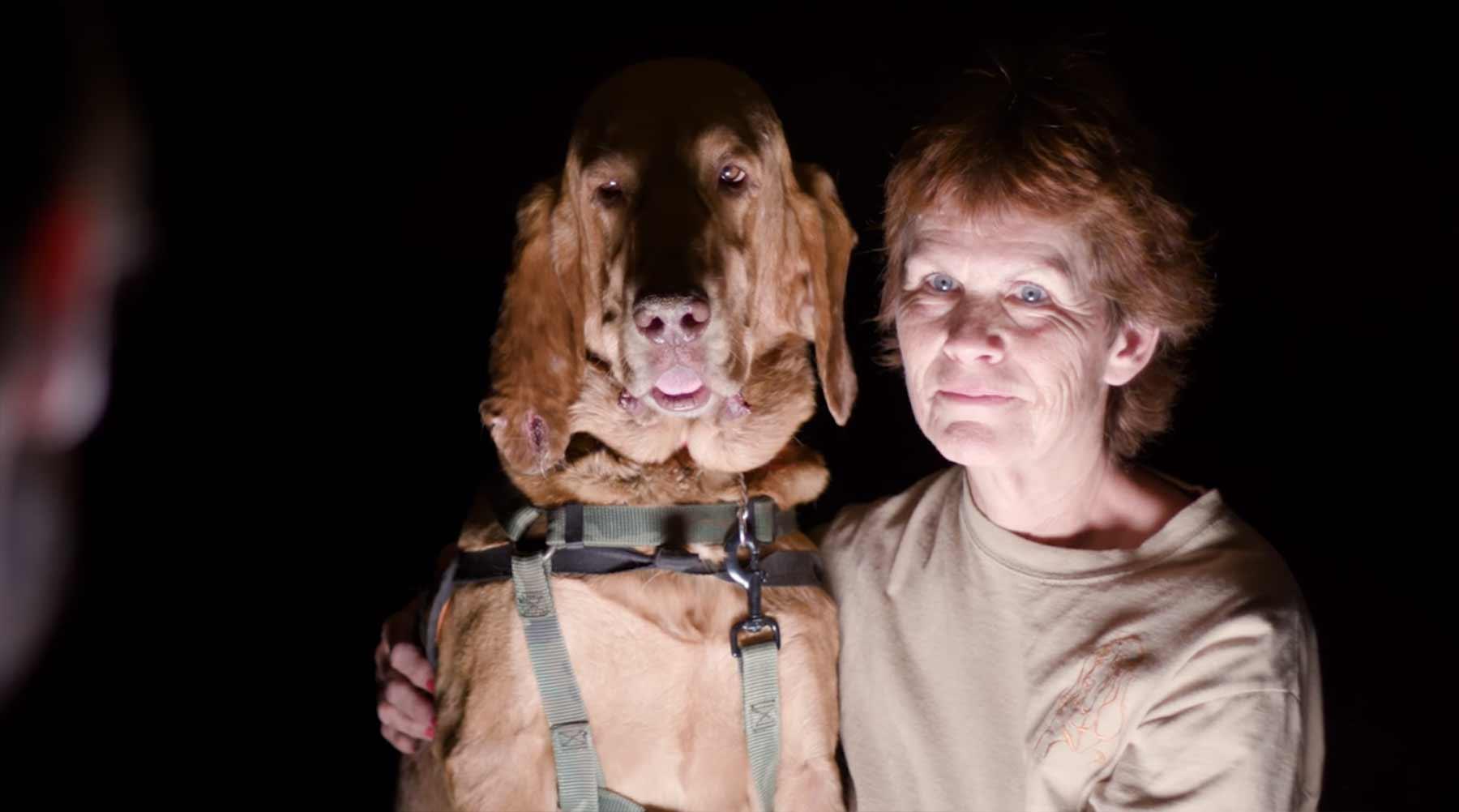 Experiment: Kann man einen Spürhund austricksen?