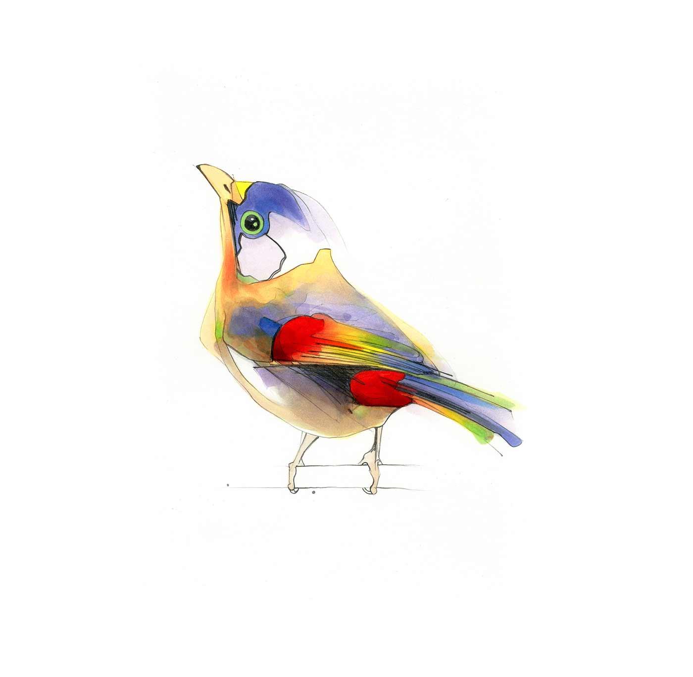 Filzer-Vögel textmarker-voegel_Alexis-Marcou_04