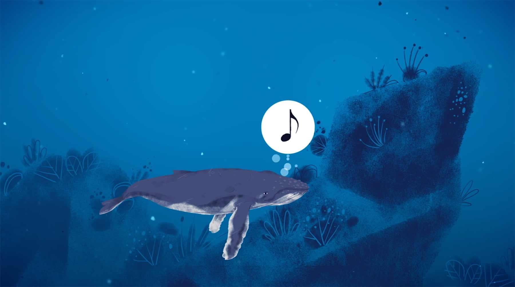 Wie(so) singen Wale eigentlich?