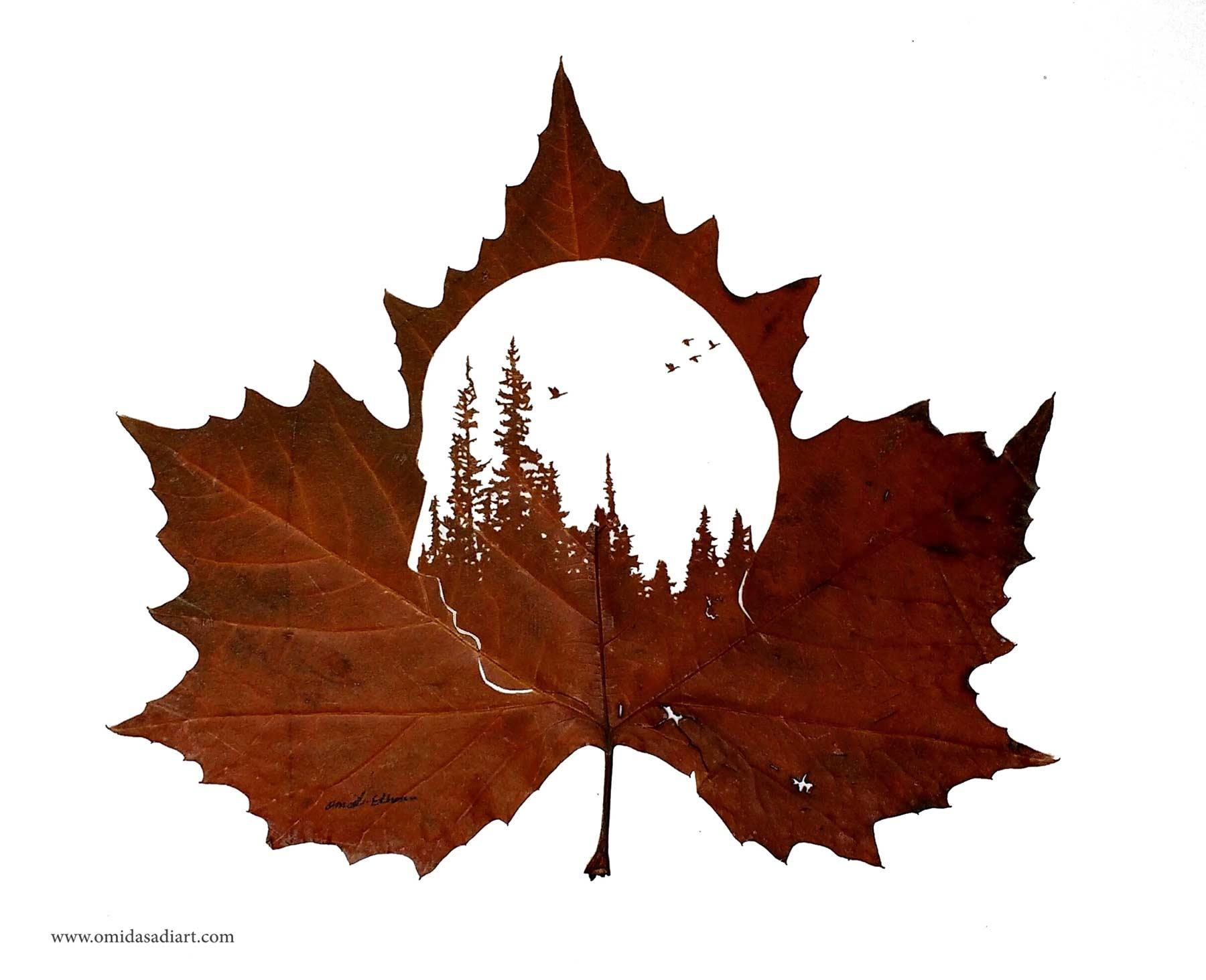 Kunstvoll geschnittene Laubblätter Omid-Asadi-leaf-art_02
