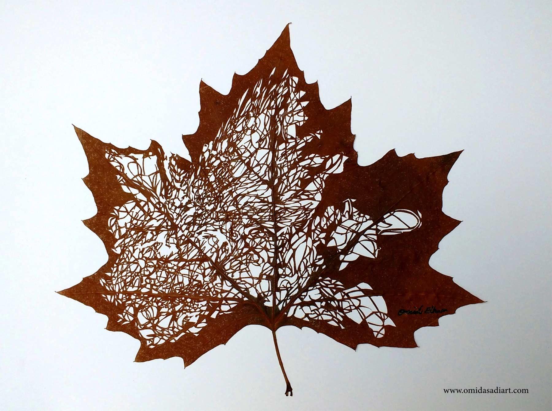 Kunstvoll geschnittene Laubblätter Omid-Asadi-leaf-art_03