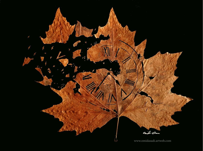 Kunstvoll geschnittene Laubblätter Omid-Asadi-leaf-art_06