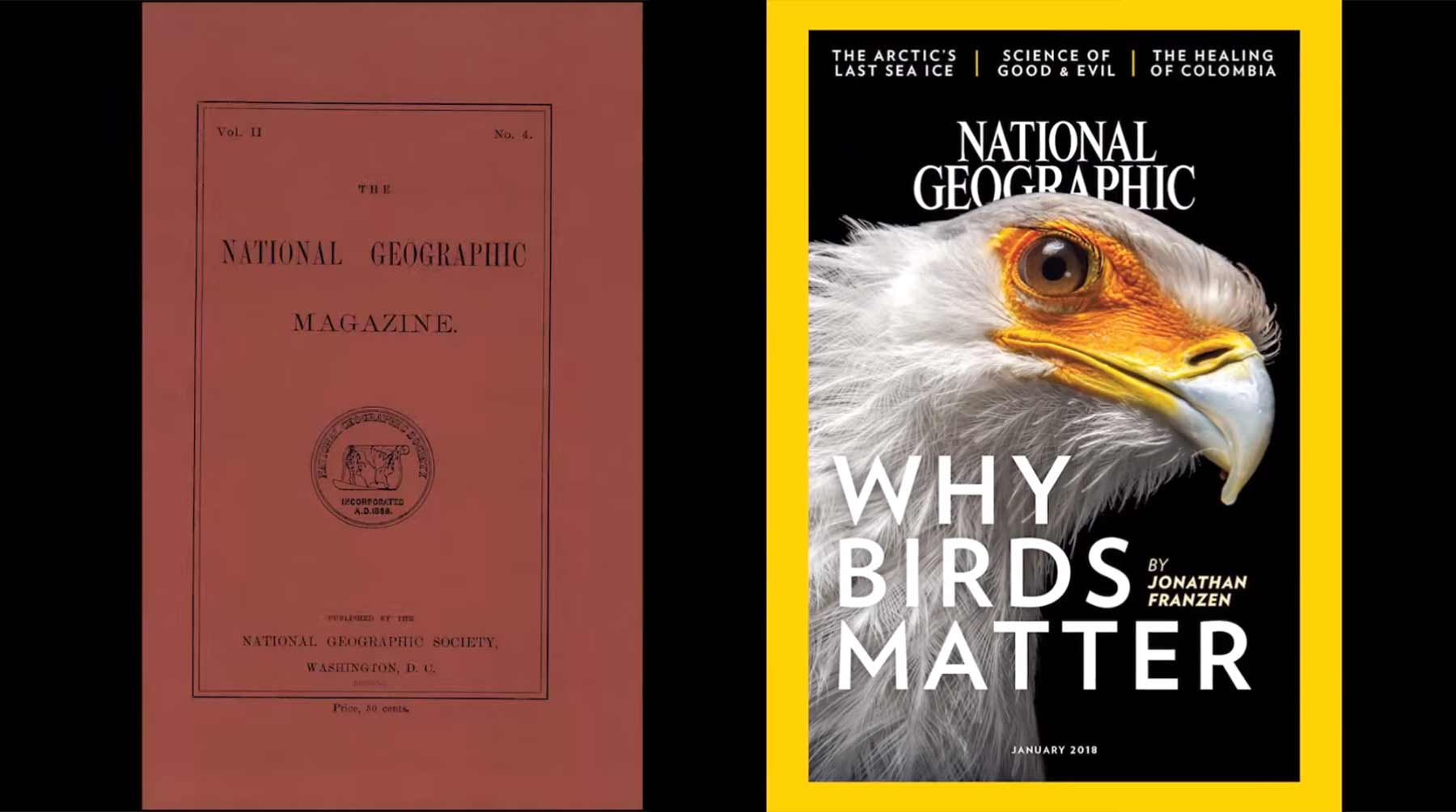 130 Jahre National Geographic-Cover in 90 Sekunden national-geographic-cover-timelapse