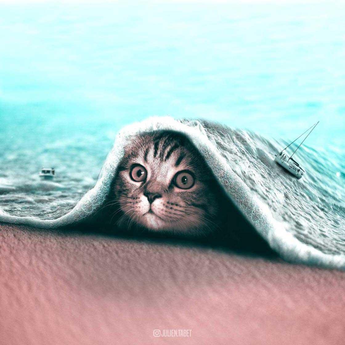 Ausgefallene Photoshop-Tiere Julien-Tabet_01