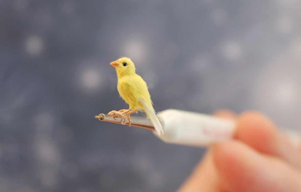 Die süßen Mini-Tierchen von Katie Doka Mezei