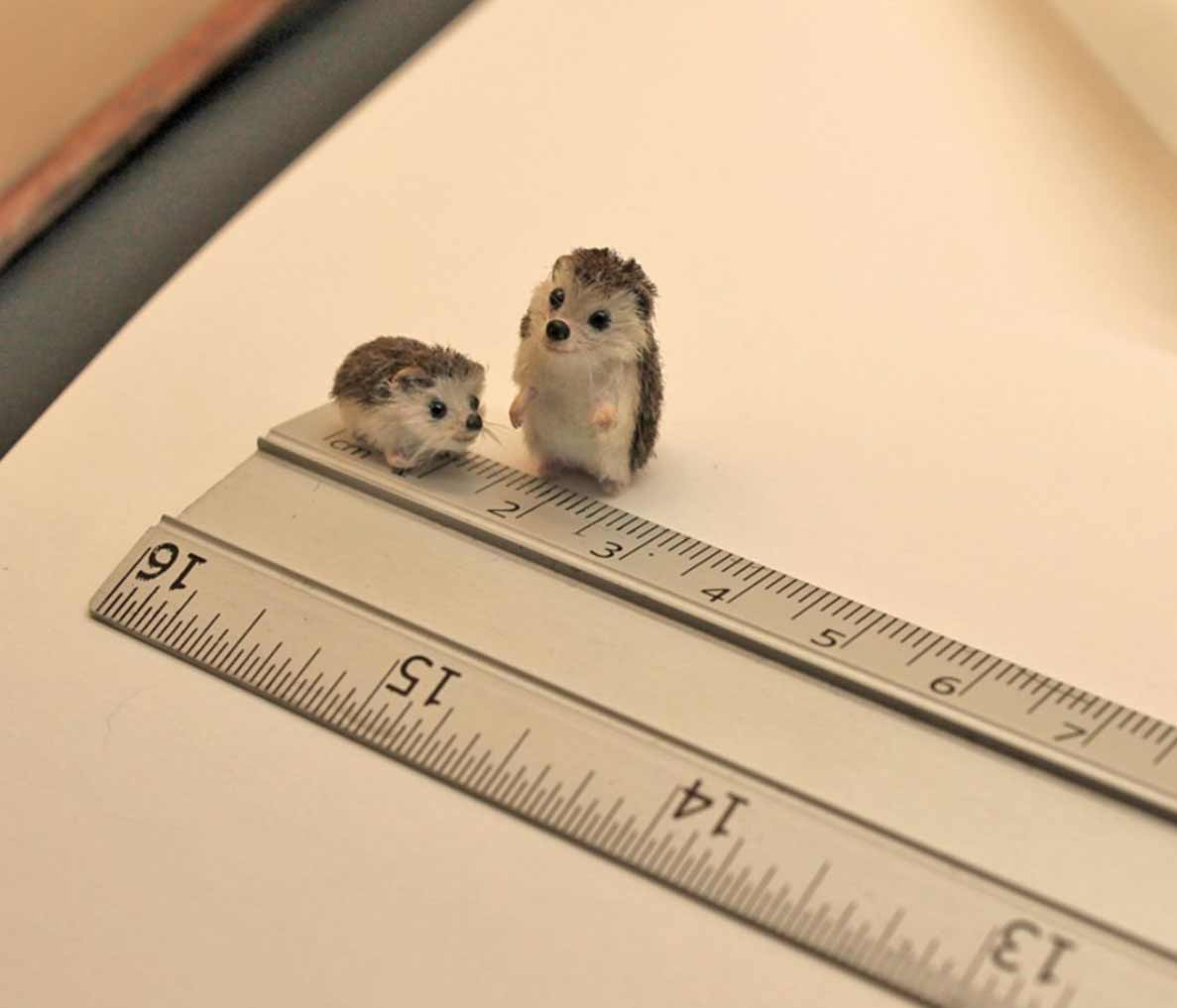 Die süßen Mini-Tierchen von Katie Doka Mezei Katie-Doka-Mezei-ooakminiatures_03