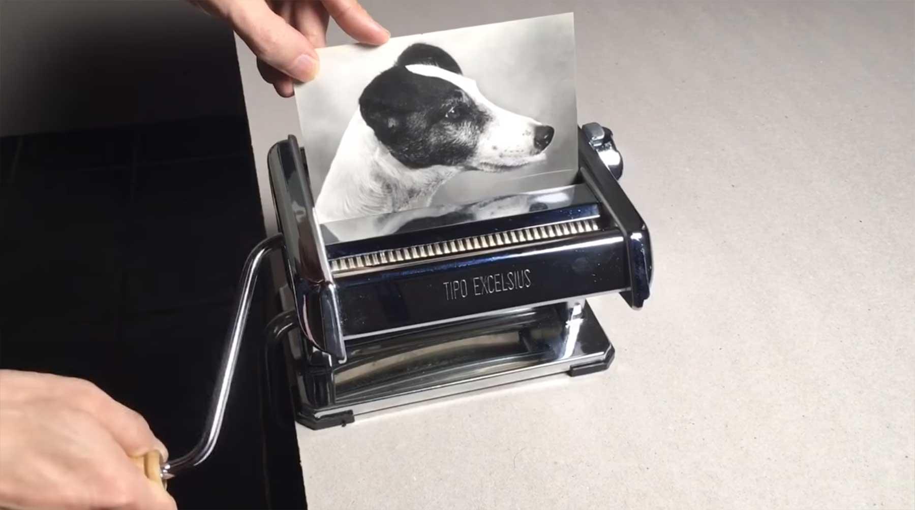 Hundefoto mittels Nudelmaschine vervierfachen