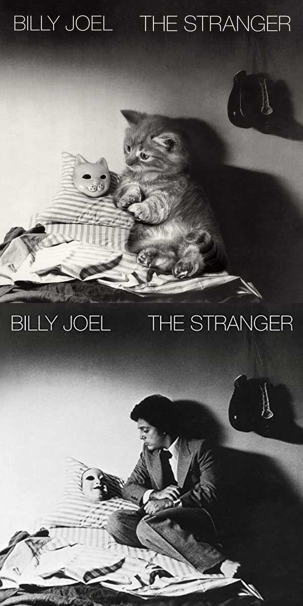 Albencover mit Katzen nachgestellt the-kitten-covers_Alfra-Martini_03