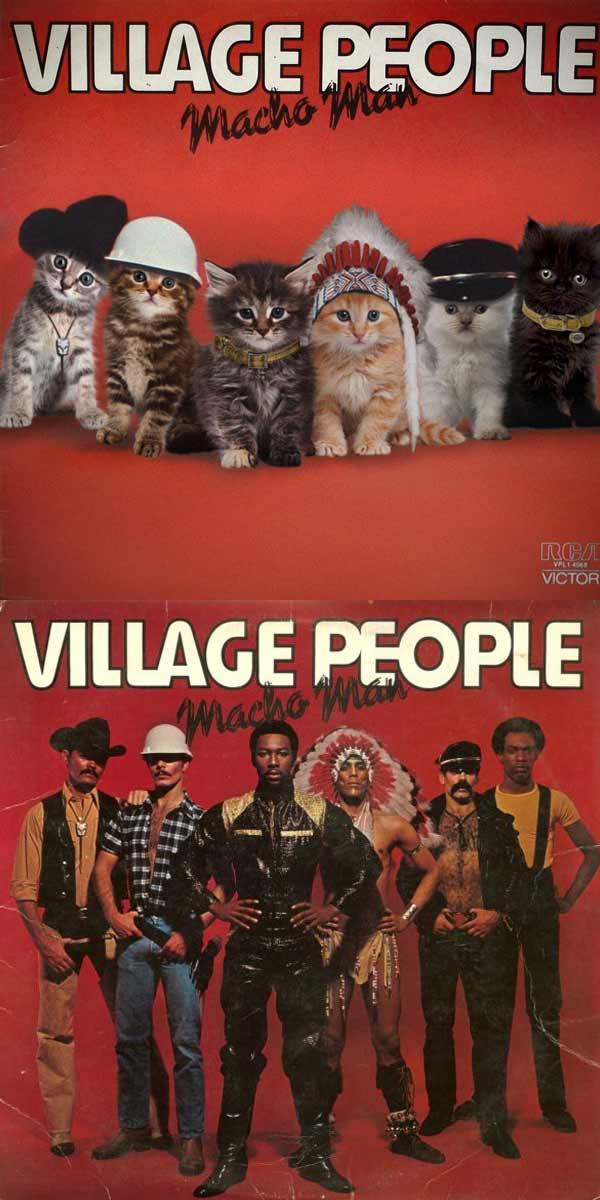 Albencover mit Katzen nachgestellt the-kitten-covers_Alfra-Martini_07